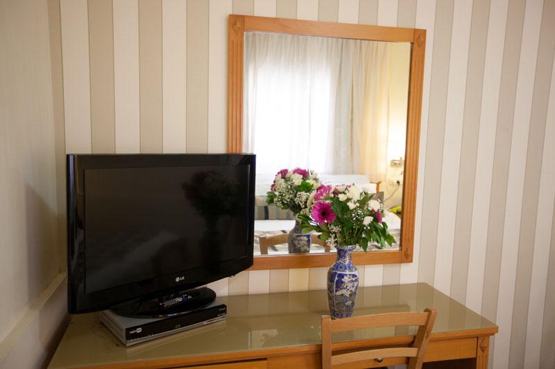 Les fleurs et une television a ecran plat